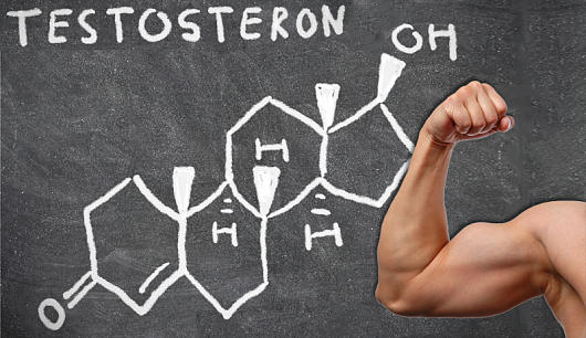Super testosteron